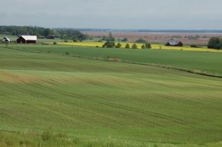 Landscape in Ostergotland