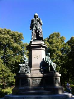 Statue of botanist Linné, near Stockholm library