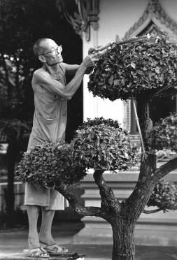 Buddhist monk at work