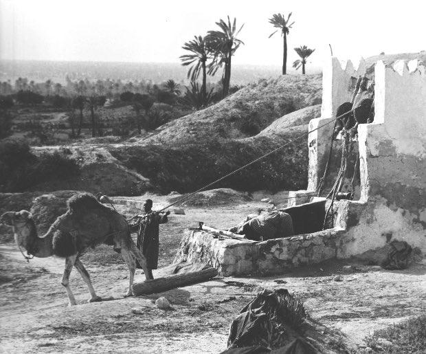 waterwell-near-el-may-tunisia-1970
