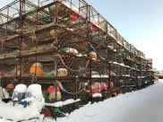 King crab cages in Kirkenes