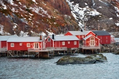 some houses in the Lofoten